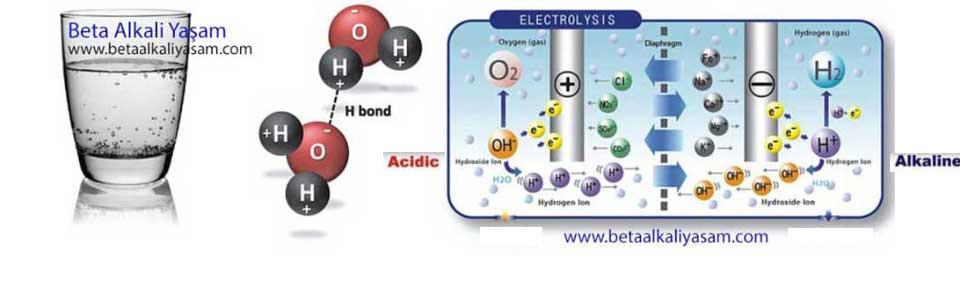 Alkali Su İyonizerinin Çalışma Prensibi ve Elektroliz Aşaması