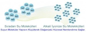 Suyun Moleküler Yapısı